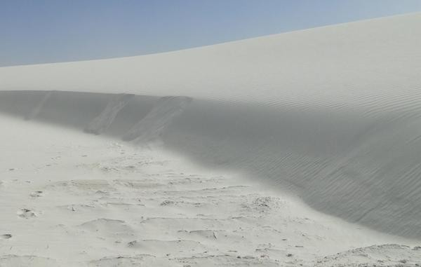 Grainfall grain flow and reattachment ripples on a 1m tall dune in White Sands National Park