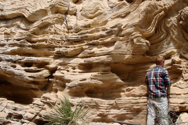 Soft Sediment Deformation in Turbidites_Brushy Canyon Formation_Permian Basin, West Texas